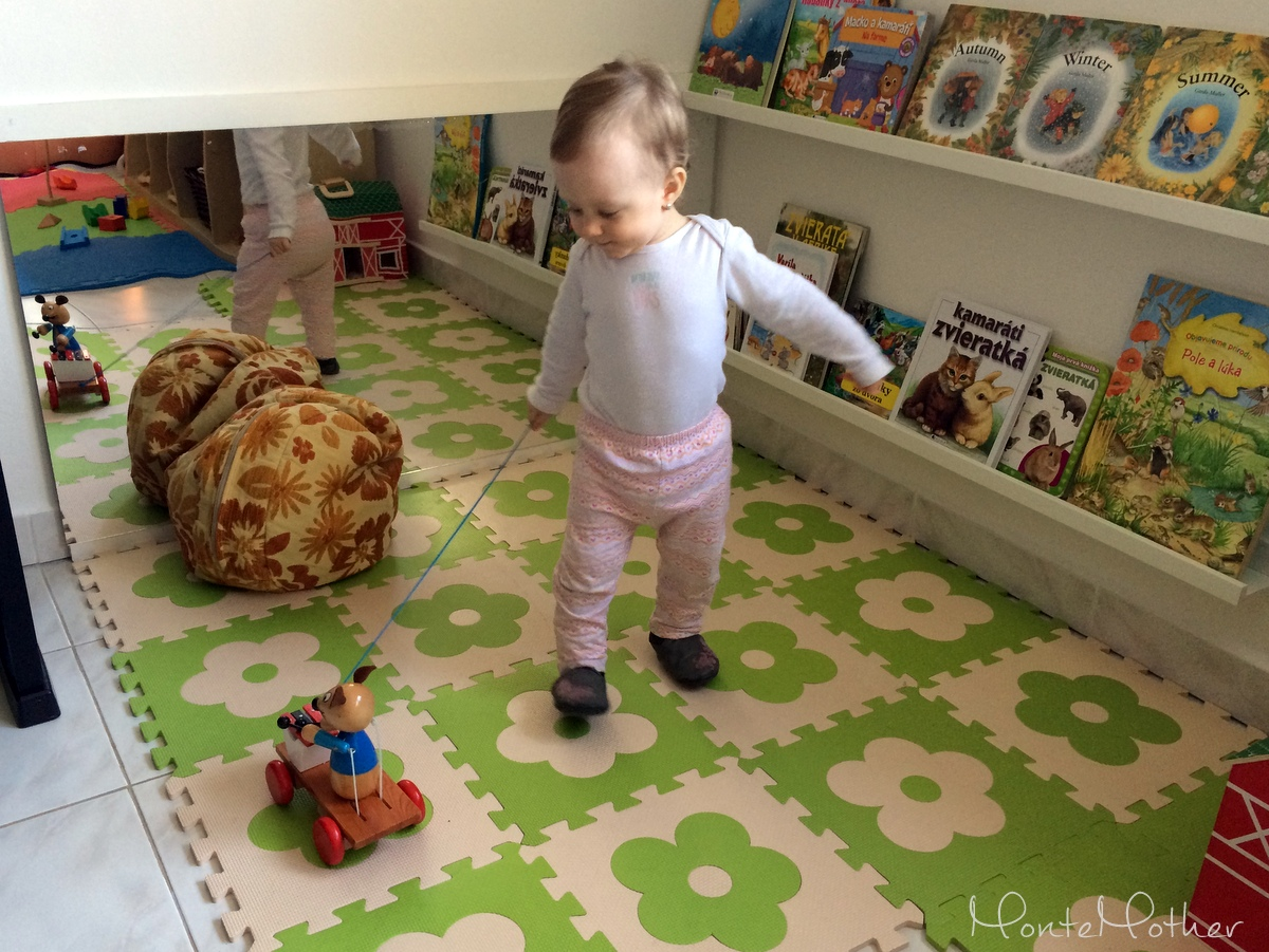 ťahacia hračka / pulling toy