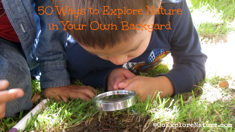 50-Ways-to-Explore-Nature-in-Your-Own-Backyard-Featured