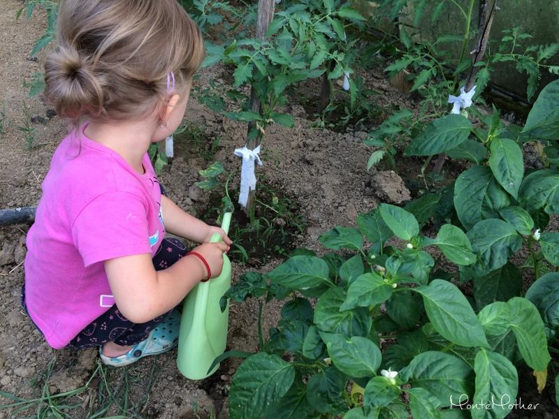 adelka-v-zahrade