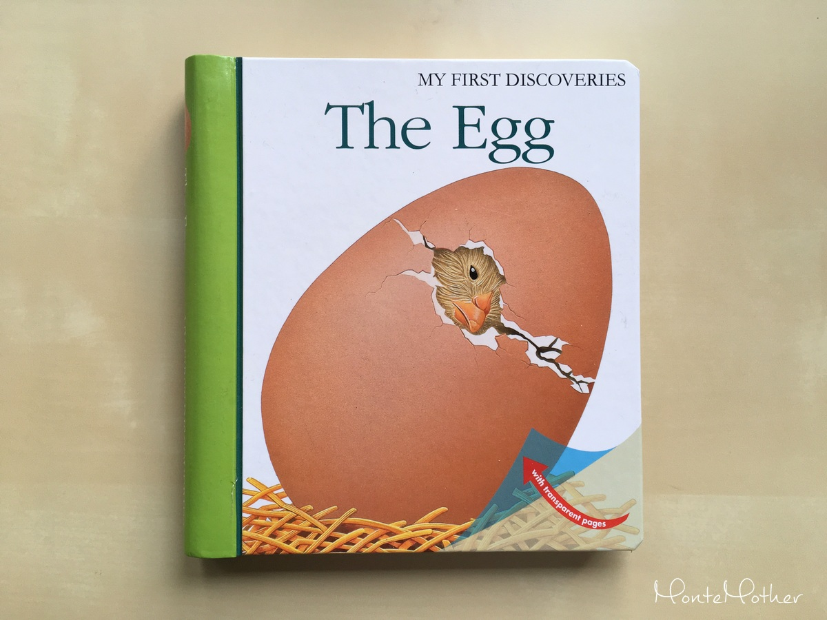 the egg children book