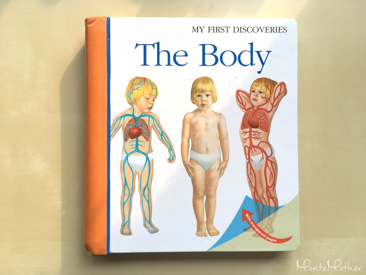 the body book children
